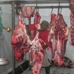 Daging sapi asal Boyolali dijamin bukan gelonggongan