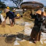 Pemkab Grobogan antisipasi turunnya harga panen