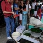 Pasar Ikan Hias Depok siap diresmikan, pedagang di Pasar Gede diminta mulai pindah