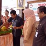 Dharma Wanita Persatuan gelar resepsi HUT