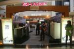 SHARP HISTORIA