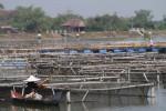 Nelayan Waduk Mulur ditertibkan