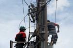 JARINGAN KABEL PLN: Demi Penghijauan, PLN Tinggikan Jaringan Kabel