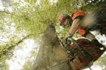 UWIT: Jaman Industri Dadi Pawitan Rusake Alam
