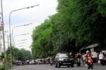 Regulasi PJU Pintar Solo Sudah Siap, Tinggal Tunggu Investor Saja