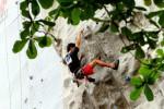 PANJAT TEBING: Solo Sumbang 4 Pemanjat di Tim PON