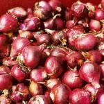 Pasokan Minim, Harga Bawang Merah Lokal Melonjak