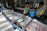 Sempat Mati Suri, Pasar Ikan Balekambang Solo Hidup Lagi