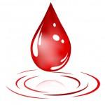 Ramadan, Stok Darah PMI Bantul Menipis