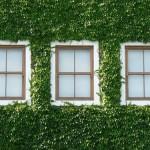 PERUMAHAN JOGJA: Green House Hanya Milik Rumah Elite