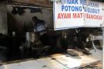 DAGING AYAM: Dicekal di Rumah Pemotongan, Lolos di Rumah Tangga