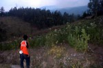 KEBAKARAN GUNUNG LAWU: Pemadaman Manual Belum Buahkan Hasil
