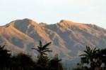 Kebakaran: Hutan Gunung Merbabu Terbakar