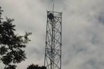 SEORANG PEREMPUAN PANJAT TOWER