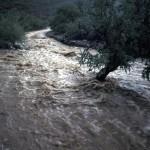 Banjir Rendam Kedundang, Warga Mengungsi ke Balaidesa