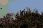 PENGHIJAUAN: Lahan Kritis di Musuk Jadi Target Lokasi Penanaman Pohon