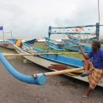 Lepas 58 Ekor Tukik untuk Kampung Wisata Bahari Kelurahan Jangkaran...