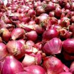 Harga Bawang Merah Capai Rp20.500