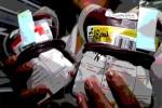 Masih Pandemi, Donor Darah di PMI Klaten Tak Perlu Rapid Test