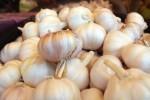 PERTUMBUHAN EKONOMI : Bawang Putih Picu Kenaikan Inflasi Jogja 0,33%