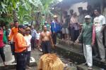 BALITA HILANG : Hilang 4 Hari, Balita di Klaten Ditemukan Tewas Membusuk