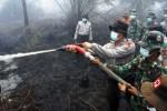 KABUT ASAP : Kebakaran Hutan Riau Libatkan 14 Perusahaan