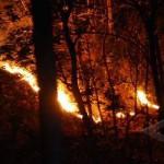 KEBAKARAN LAWU : Api di Lereng Lawu Merembet ke Karanganyar