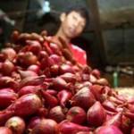 HARGA KEBUTUHAN POKOK : Kementan: Tak Ada Alasan Impor Bawang Merah!