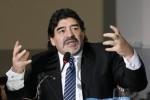 Maradona Ingin Besut Argentina Lagi