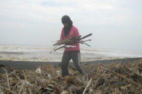 Pantai Pandansimo Dirintis Jadi Kawasan Bebas Sampah
