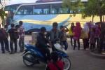 LEBARAN 2013 : Pemudik Sewa Bus 7 Hari Sambil Gembirakan Warga...