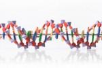 Ilustrasi Asam deoksiribonukleat alias DNA. (Dailymail.com)