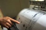 Ilustrasi seismograf pencatat gempa bumi (Denesen.mk)