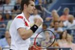 CEDERA PEMAIN: Tak Cukup Fit, Murray Bisa Absen Australian Open