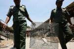 PERDAGANGAN SATWA LANGKA : Polisi Bongkar Praktik Perdagangan Satwa Langka