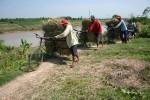 BANJIR KLATEN : Ternak Telantar, Warga Lereng Merapi Sumbang Rumput ke Pati