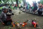 KEBIJAKAN PEMKOT : Solo Larang Topeng Monyet