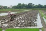 BANTUAN ALAT PERTANIAN : Desa Sribit Klaten Minim Traktor