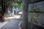 MESUM DI SOLO : Kondom Bekas Bertebaran di Taman Kota
