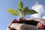 PENGHIJAUAN : Tanam 2.000 Pohon, Wujud Cinta Lingkungan