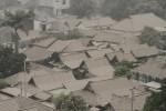 DAMPAK LETUSAN KELUD : Ini Bahaya Abu Vulkanik bagi Tanaman