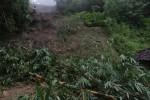 TANAH LONGSOR BOYOLALI : Dua Rumah Rusak Tertimpa Tanah Longsor