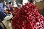 INFO BELANJA : Jelang Iduladha, Harga Sayur Naik Tipis