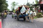 PEMILU 2014 : Caleg DPRD Klaten Ini Pilih Berkonvoi dengan 100 Gerobak Sapi