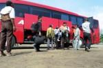 MUDIK LEBARAN 2014 : Jembatan Comal Ambles, Bus Wonogiri Telat 37 Jam