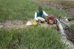 Ilustrasi petani mengairi lahan pertanian dengan mesin penyedot air yang dimodifikasi menggunakan gas elpiji sebagai bahan bakar. (Desi Suryanto/JIBI/Harian Jogja)