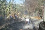 KEBAKARAN SRAGEN : Ditinggal ke Pasar, Rumah Warga Nglorog Ludes Dilalap Api