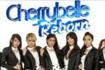 KONSER MUSIK : Hore! Cherrybelle Konser di Solo!