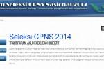 LOWONGAN CPNS 2014 : Ini Alur Pendaftaran CPNS dari panselnas.menpan.go.id hingga sscn.bkn.go.id
