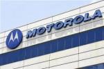 PONSEL BARU MOTOROLA : 4 September, Tiga Ponsel Motorola Meluncur